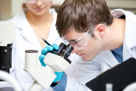 особенности клебсиеллы окситока