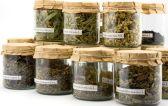 Какие травы можно пить при панкреатите: полезные советы