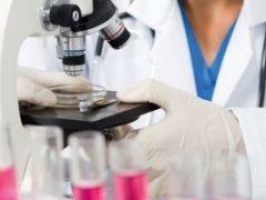 Как и для чего делают анализ кала на панкреатическую эластазу?
