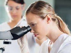 Амилаза панкреатическая: о чем говорит отклонение уровня фермента от нормы?