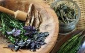 Травы при гастрите: полезные лекарственные растения