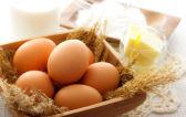 Можно ли есть яйца при гастрите: варенные, жаренные или сырые