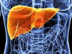 Проявления и методы лечения гепатомы печени