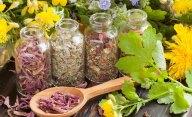 какие травы помогут в лечении панкреатита