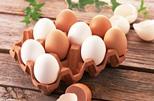 яйца при гастрите