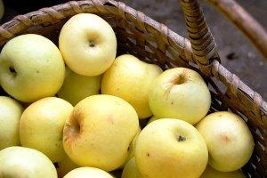 Запеченные яблоки при панкреатите рецепты