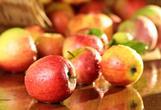 при панкреатите яблоки